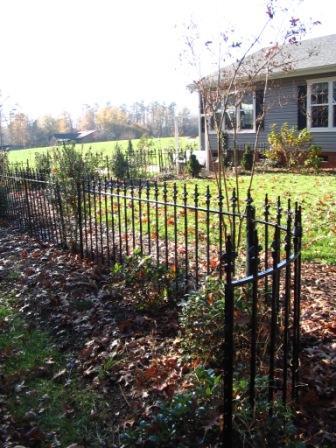 fence-w.jpg
