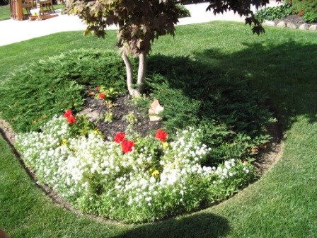 Landscaping plan useful foundation planting ideas zone 5 for Garden designs for zone 5