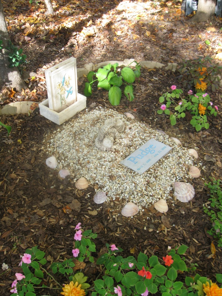 Pet Memorial Ideas For The Garden stylist design dog garden statues simple decoration dog angel statue beautiful pet memorial garden by phenomegnome nice design ideas The Memory Garden